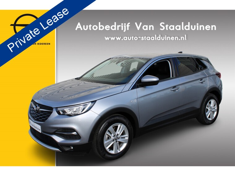 Foto van Opel Grandland X 1.2 Turbo Innovation
